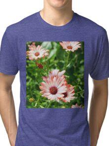 Pink Cinnamon Tradewind Daisy Flowers in the Garden Tri-blend T-Shirt
