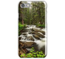 Roosevelt National Forest Stream Portrait iPhone Case/Skin