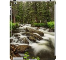 Roosevelt National Forest Stream Portrait iPad Case/Skin