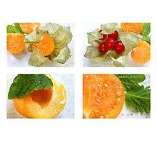 Starter Set Quartett to ReFresh Photographic Print