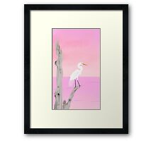 My One Egret Framed Print