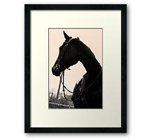 calvin Framed Print