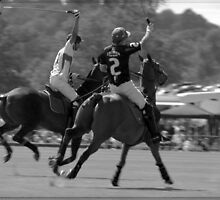 Cowdray Polo by AmandaW
