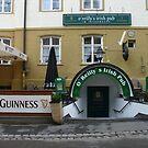 Löwenbräu and Guinness    by Ellanita