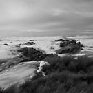 High Tide in B&W by Kylie  Sheahen