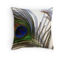 Colour, Light and Shadow Throw Pillow