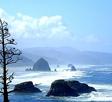 Cannon Beach Morning by skreklow
