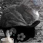 cat in a hat by kathijones