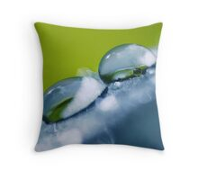 Gathering Waterdrops (win your favorite photo... go to my homepage!) Throw Pillow