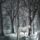Secret woods by kathijones