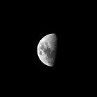 moon by Partha Saha