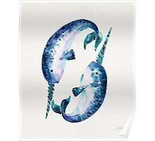 Blue Narwhals Poster