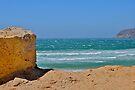 Seascape by Ainsley Kellar Creations