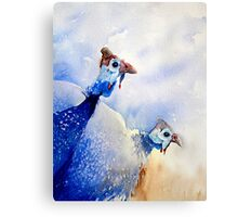 Out On A Picking Canvas Print
