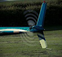 Tail motion by Matt Sillence