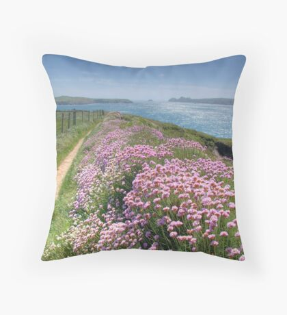 Pembrokeshire Coastal Path Throw Pillow