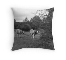 Who you looking at?! Throw Pillow