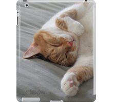 Cute cat sleeping iPad Case/Skin