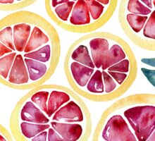 Sliced Grapefruits Watercolor Sticker