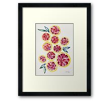 Sliced Grapefruits Watercolor Framed Print