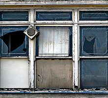 Old Factory Windows  by Ethna Gillespie