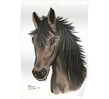 Grey Mare Poster