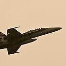 F/A-18 by Waqar