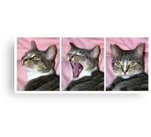 Tribble Yawning Canvas Print