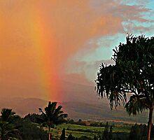 ~ Maui Rainbow ~ by Brenda Boisvert