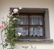 Window by Marika Siegenthaler
