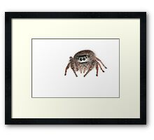 Who, Me? Framed Print