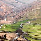 Cowside Beck & Brootes Lane by SteveMG