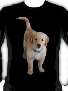 Cute Lil Puppy T-Shirt