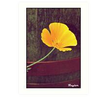 Flower & Barrel Art Print