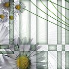 Dawn Daisies Detail by pentangled