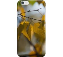 Dreamy Yellow Leaves Swaying in the Wind  iPhone Case/Skin