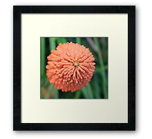 Atop the Fire Poker Framed Print