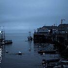 Working Pier by Nikki Collier