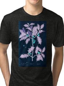 A curious herbal Elisabeth Blackwell John Norse Samuel Harding 1737 0526 The Holly Tree Inverted Tri-blend T-Shirt