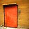 Orange Old Doors