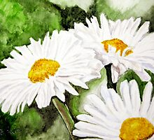 Retha's Daisies by Jim Parker