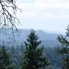 Mountains by Soulmaytz