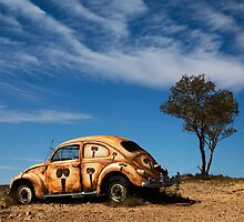 Desert Bug by Peter Kewley