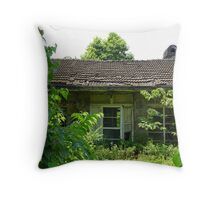 The General's Last Abode Throw Pillow