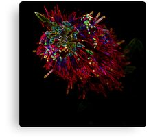 Neon Bottle Brush Canvas Print