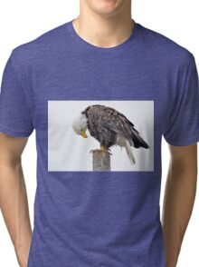 Seeing is Believing - American  Bald Eagle Tri-blend T-Shirt