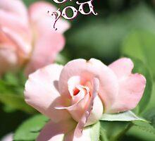 Thinking of You Rose Card by Corri Gryting Gutzman