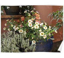 garden flowers - 2 Poster