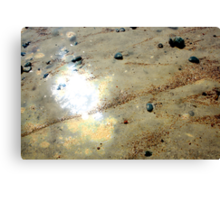 Shine of The Sand Canvas Print