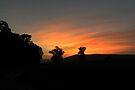 Ozark Sunset 2 by NatureGreeting Cards ©ccwri